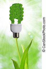 eco, bulwa, energia