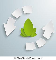 eco, ciclo, infographic, flechas, 6, pedazos