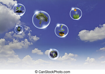 Eco concept : Business hand point tree, earth flower in bubbles against the sun and the blue sky