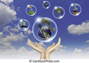 eco, concept, :, hand, houden, aarde, en, bloem, in, bellen, tegen, de, zon, en, de, blauwe hemel
