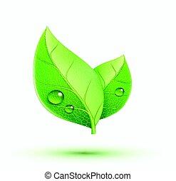 Eco concept icon