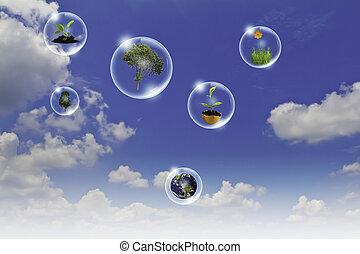 eco, concept, :, zakelijk, hand, punt, boompje, aarde, bloem, in, bellen, tegen, de, zon, en, de, blauwe hemel