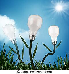 eco, conception, résumé, arrière-plans, ton