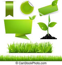 eco, conjunto, verde