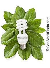 eco, energía, concepto, verde