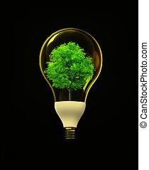 eco, energi