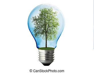 eco, energia, bianco, lampada