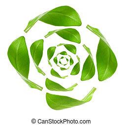 eco, energie, recycling, vrijstaand, groen wit