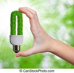 eco, energie, zwiebel, in, hand