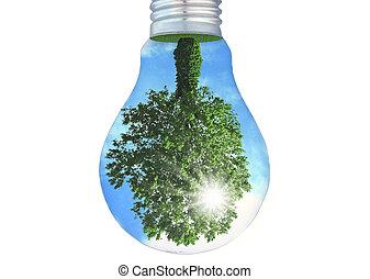 eco energy lamp on white