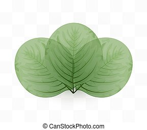 eco, feuilles, transparent, arrière-plan., vert, concept.