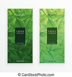 eco, feuilles vertes, ensemble, bannière