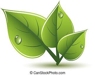 eco, feuilles vertes, vecteur, conception