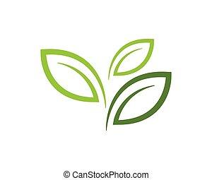 eco, foglia albero, sagoma, logotipo