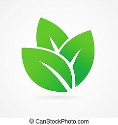 eco, foglia verde, icona