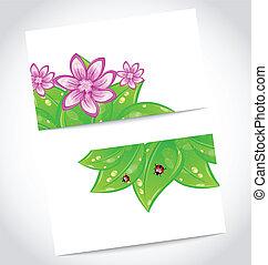 eco, foglie, cartelle, set, verde, amichevole