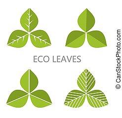 eco, folhas