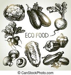 eco, foods., 野菜, set., イラスト, ベクトル, スケッチ, 手, 引かれる
