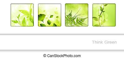 Eco frame collection