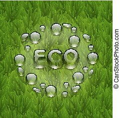 Eco friendly background with water drops on fresh green grass te