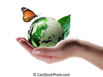 eco-friendly, begrepp, -, fjäril