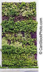 eco friendly green wall