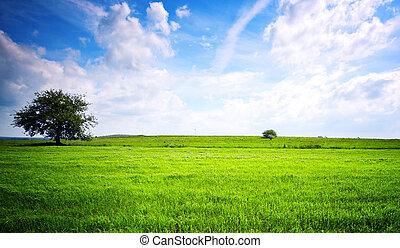 Eco green landscape