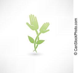 Eco hand icon