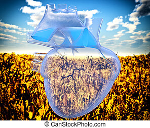 Eco heart - Model of artificial human heart - x-rayed....