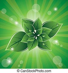 eco, hojas verdes, vector, diseño