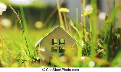 Eco-home metaphor with house model in green grass - Small...