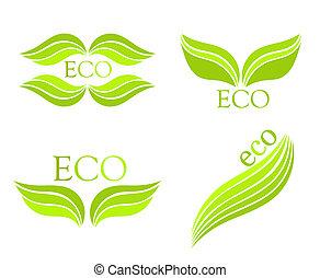eco, icone