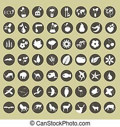 eco, icono, conjunto
