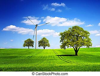 eco, közvetlen, fordíts, zöld, természet
