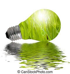 eco, lámpara, reflejado adentro, agua