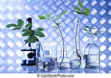 eco, laboratoire