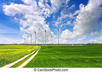 eco, landscape