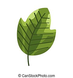 eco leaf green