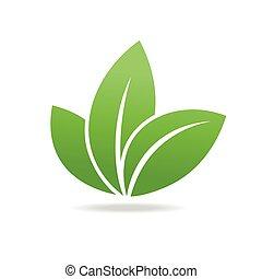 eco, leaf., isolato, fondo., verde bianco, icona