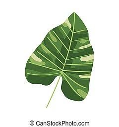 eco leaf plant