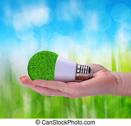 Eco LED bulb in hand.