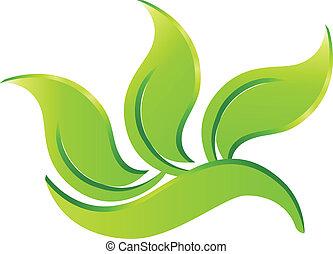 eco, logo, zielony
