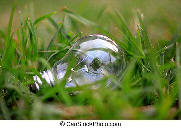 eco, luz, blub, energía, concepto