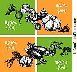 Eco natural food menu vintage background. Sketch hand drawn vegetables banners. Vector illustration