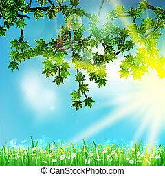 Eco nature / green and blue with sunshine.