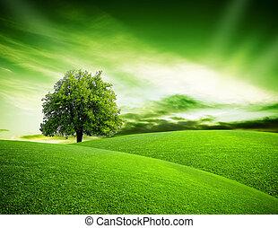 eco, planeta verde