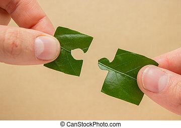 eco puzzle concept