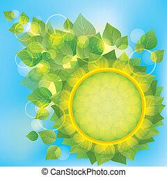 eco, résumé, feuilles vertes, fond
