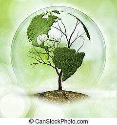 eco, résumé terre, arrière-plans, arbre