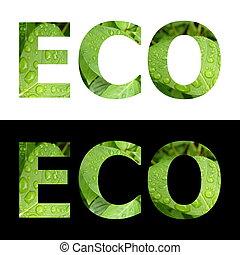 eco, słowo, textured